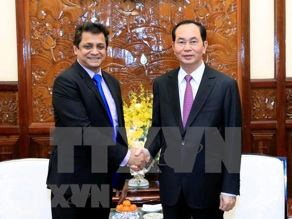 Presidente de Vietnam recibe a directivo de gran grupo indio de energia hinh anh 1
