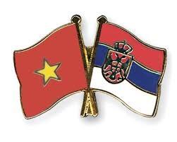 Dirigentes vietnamitas felicitan a Serbia por el Dia Nacional hinh anh 1