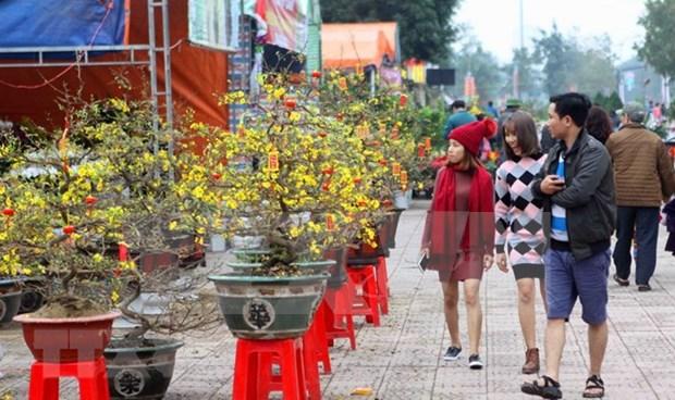 Extranjeros emocionados con atmosfera del Ano Nuevo Lunar en Vietnam hinh anh 1