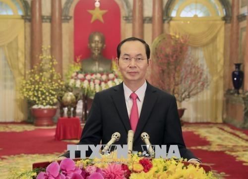 """Presidente de Vietnam: """"¡Con la unidad de todo el pueblo, seguramente triunfamos!"""" hinh anh 1"""