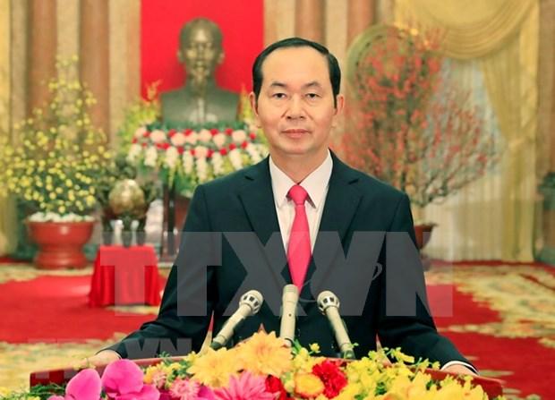 Presidente de Vietnam felicita a soldados de Truong Sa en ocasion del Tet hinh anh 1