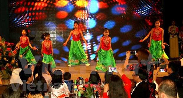 Comunidades vietnamitas en extranjeros celebran actividades con motivo del Tet 2018 hinh anh 1
