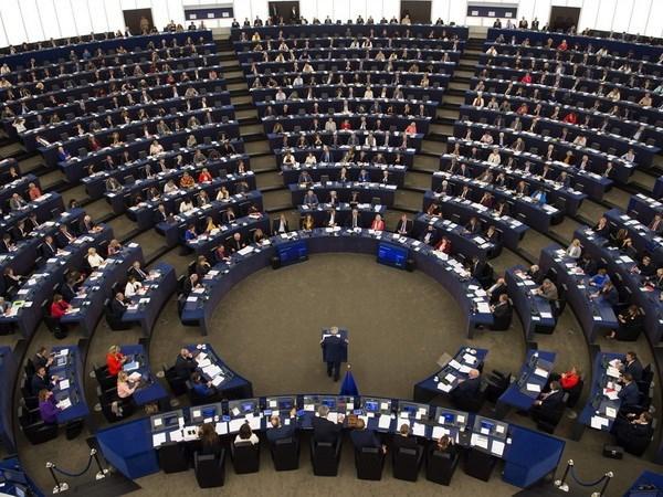 Parlamento Europeo impulsa la firma de Tratado de Libre Comercio Vietnam-UE hinh anh 1