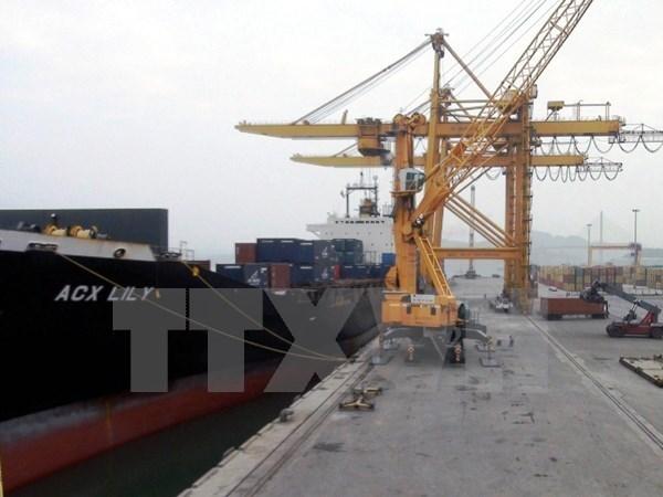 Puerto maritimo de Hai Phong mantiene operacion durante vacaciones del Tet hinh anh 1