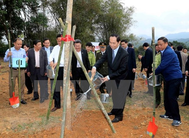Convocan en Bac Kan campana para sembrar arboles hinh anh 1
