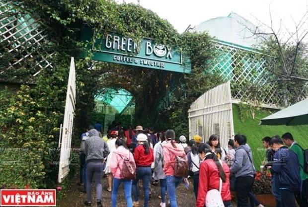 Provincia altiplanica de Lam Dong recibe mas turistas durante el Tet hinh anh 1