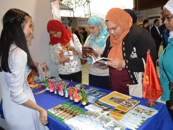 Cultura vietnamita atrae a amigos internacionales en Egipto hinh anh 1