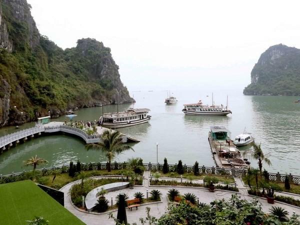 Provincia de Quang Ninh registra alta llegada de turistas durante el Ano Nuevo Lunar hinh anh 1