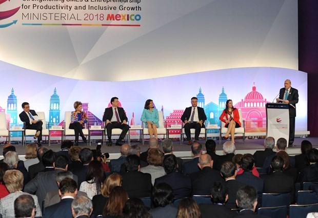 Vietnam participa en conferencia ministerial de OCDE en Mexico hinh anh 1