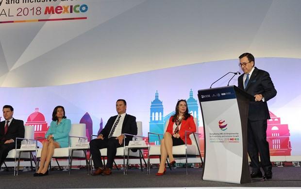 Vietnam participa en conferencia ministerial de OCDE en Mexico hinh anh 3