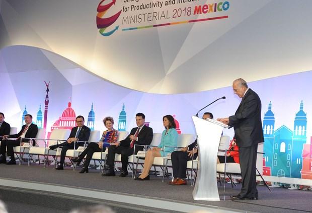 Vietnam participa en conferencia ministerial de OCDE en Mexico hinh anh 2