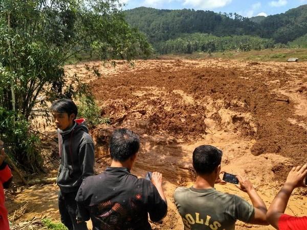 Indonesia: Avalancha deja cinco muertos y 18 desaparecidos hinh anh 1