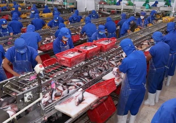 Crecen exportaciones de pescado Tra al Reino Unido hinh anh 1