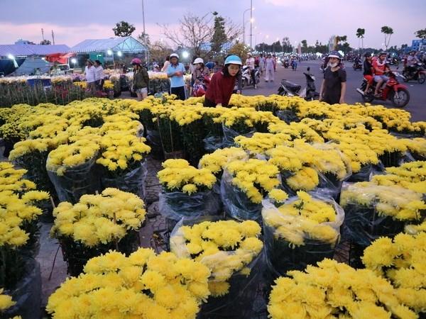 Vietnam destina millones de dolares para importacion de flores para el Tet hinh anh 1