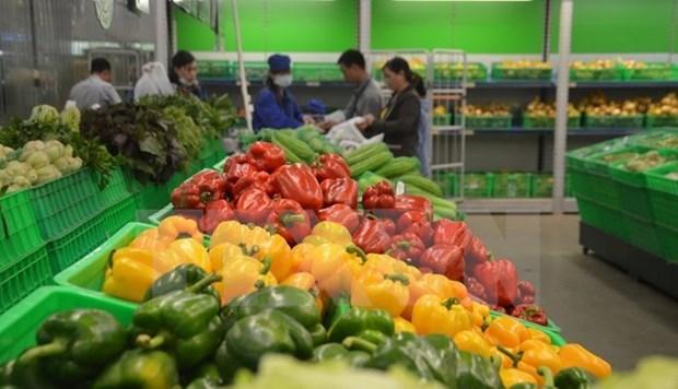 Vietnam registra alto incremento de exportaciones de frutas hinh anh 1
