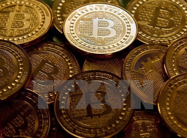 Malasia por controlar transacciones de monedas virtuales hinh anh 1