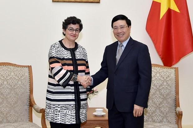 Vietnam pide mas apoyo del Centro de Comercio Internacional hinh anh 1