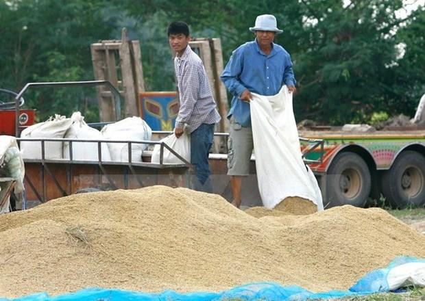 Tailandia aspira incrementar sus exportaciones a ASEAN hinh anh 1
