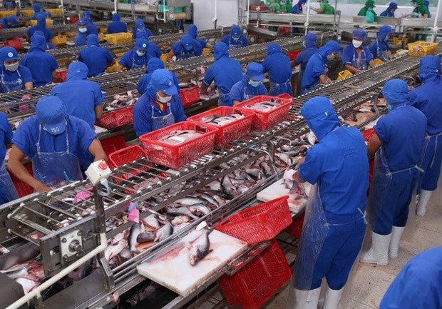 Exportaciones de productos acuicolas vietnamitas preven perspectivas positivas en 2018 hinh anh 1