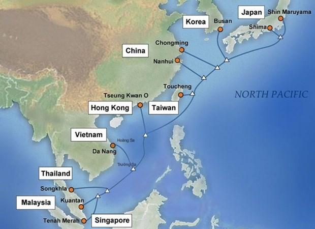 Servicios de internet en Vietnam afectados por fallo en cable submarino APG hinh anh 1