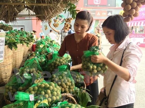 Preve exportacion de longan vietnamita a mercado australiano en 2019 hinh anh 1