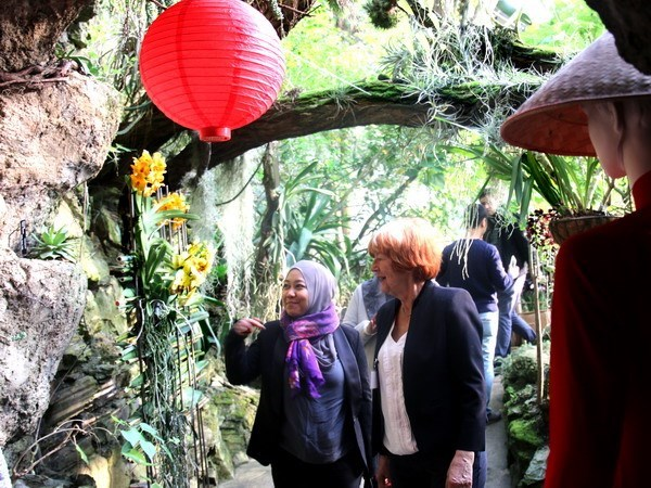 Presentan en Praga orquideas de origen de Vietnam hinh anh 1