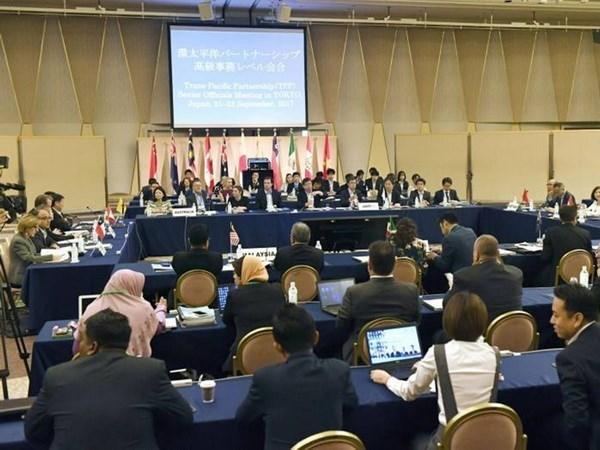 Malasia aprecia interes de EE.UU. por reincorporacion a TPP hinh anh 1