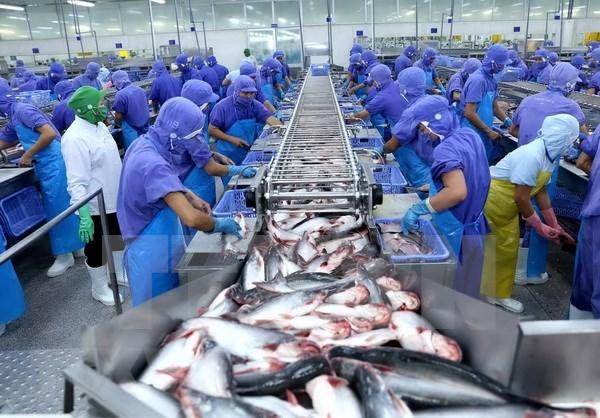Vietnam reclama ante la OMC por restricciones de EE.UU. a sus pangasius hinh anh 1
