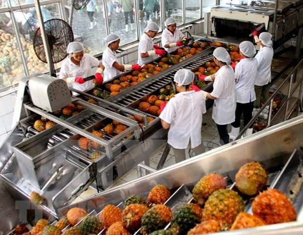 En tendencia alcista exportaciones vietnamitas de verduras y frutas hinh anh 1