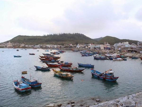 Provincia vietnamita refuerza combate contra la pesca ilegal hinh anh 1