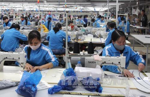Confecciones textiles de Vietnam ante la cuestion de renovarse en era de la industria 4.0 hinh anh 1
