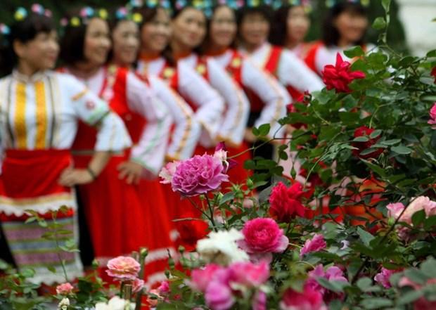 Rosas marcan aniversario de nexos Vietnam-Bulgaria hinh anh 1