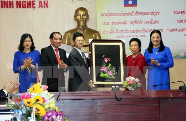 Destacan esfuerzos de provincia vietnamita de Nghe An en fomento de nexos Vietnam-Laos hinh anh 1