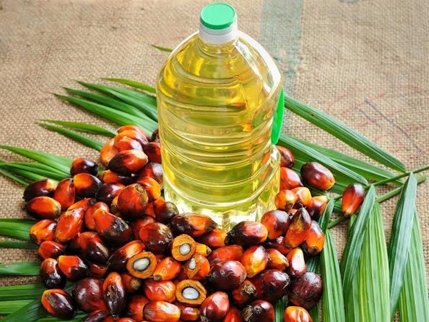 Produccion de aceite de palma de Malasia aumentara en 2018 hinh anh 1