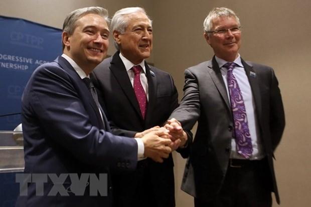 Canada, Chile y Nueva Zelanda impulsan cooperacion tras firma del CPTPP hinh anh 1