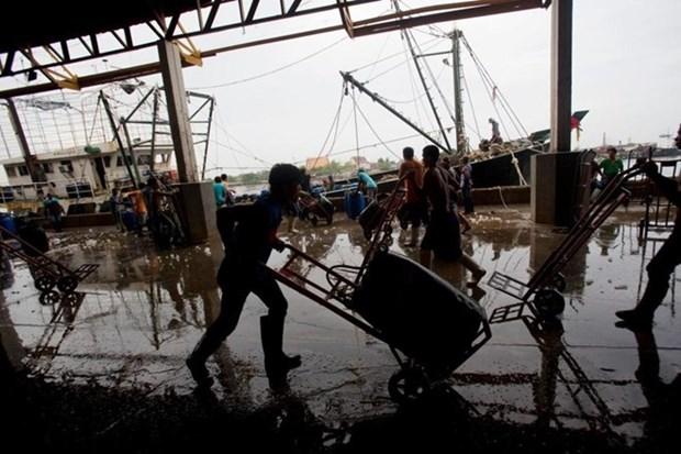 Tailandia obliga pago a traves de cuentas bancarias para pescadores migrantes hinh anh 1