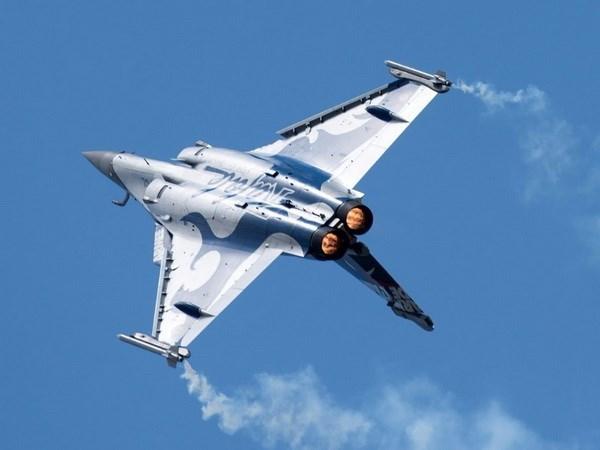 Limites de aceite de palma de UE obstaculizan acuerdo de aviones Malasia- Francia hinh anh 1