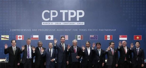 Vietnam integra acuerdo comercial mas importante del mundo con firma del CPTPP hinh anh 1