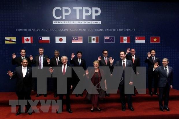 Vietnam y otros paises del Pacifico firman historico acuerdo comercial CPTPP hinh anh 1