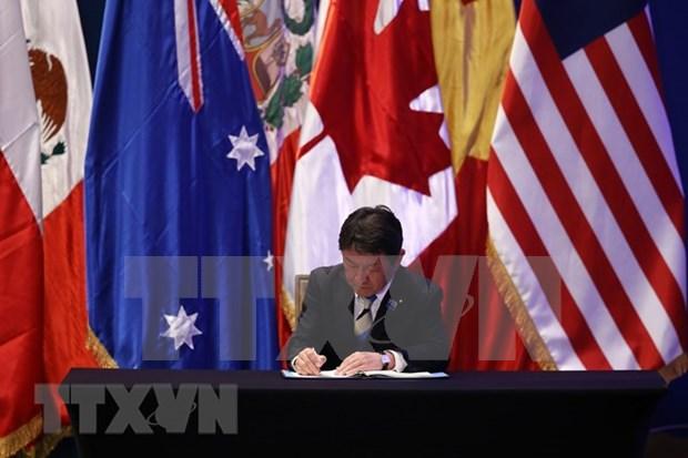 Vietnam integra acuerdo comercial mas importante del mundo con firma del CPTPP hinh anh 3