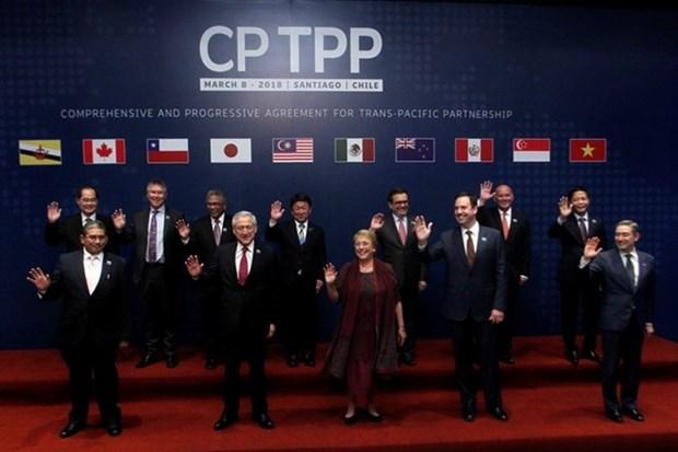 CPTPP dara un nuevo impulso a nexos Vietnam-Chile, dice embajador vietnamita hinh anh 1