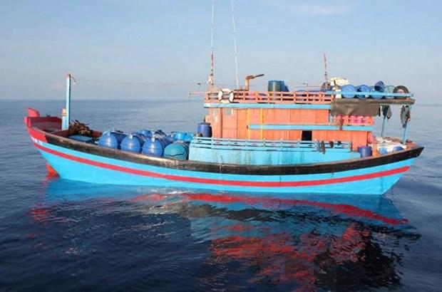 Provincia vietnamita de Phu Yen refuerza combate contra la pesca ilegal hinh anh 1