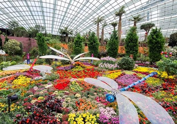 Singapur exhibe macetero floral mas grande del orbe hinh anh 1
