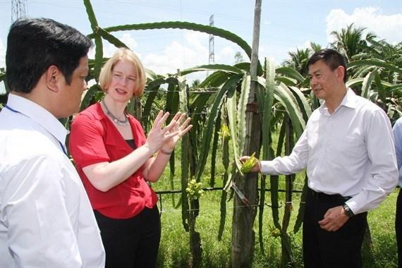 Vietnam y Nueva Zelanda dirigen hacia intercambio comercial de mil 700 millones de dolares hinh anh 1