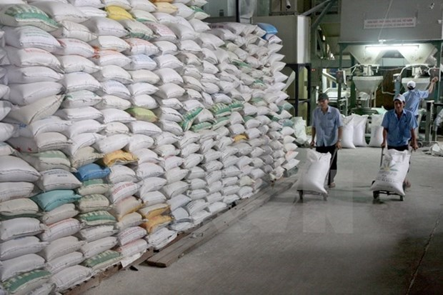Arroz japonico puede ser variedad clave de exportacion de Vietnam hinh anh 1