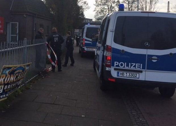 Embajada de Vietnam en Alemania aplica medidas de proteccion ciudadana hinh anh 1