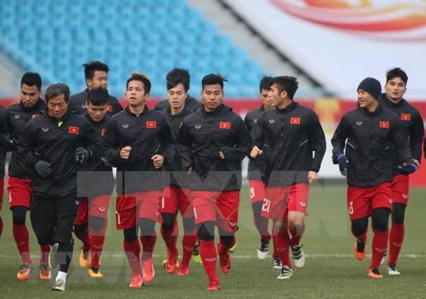 Futbol de Vietnam lidera clasificacion del Sudeste Asiatico hinh anh 1