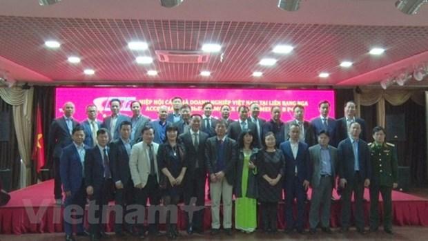 Consolidan empresas vietnamitas sus negocios en Rusia hinh anh 1