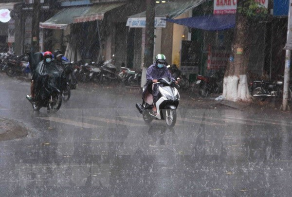 Destacan aportes de Vietnam a esfuerzos regionales para prevenir desastres naturales hinh anh 1