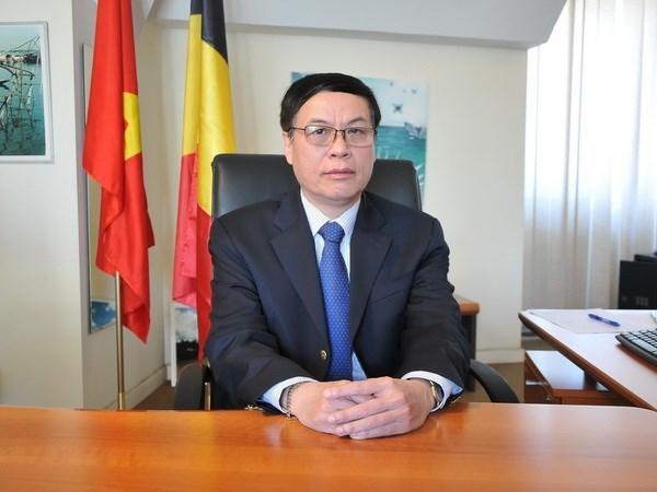 Vietnam y Belgica consideran establecer asociacion estrategica en algunas esferas hinh anh 1